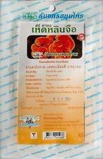Lingzhi Ganoderma Reishi Mushroom 100% Natural 20 Bolsitas De Té Para-Super Alimento Int Post
