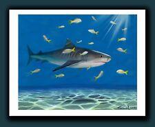 Signed TIGER SHARK Art Print by Tom Ryan - Tiger Beach, Bahamas - Shark Painting
