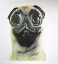 """Pug Card with Envelope """"Just thinkin' about you...naked."""""""