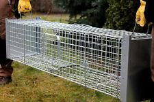 Trappola per catturare martore, puzzole, volpi, gatti e giovani 150cmx34x34 cm !