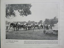 1915 WW1 PRINT ~ FAMILIAR BUGLE CALL STABLES BRITISH CAVALRY HORSES GROOMED