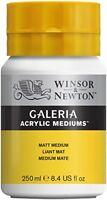 Winsor  Newton Galeria Matt Medium - 250ml