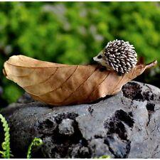 Miniature Garden Hedgehog on a Brown Leaf Dollhouse / Fairy Faerie GO 16664