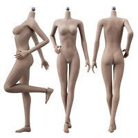 "JIAOU DOLL 1/6 Female Body 12"" Seamless Medium Bust Action Figure Dark Skin"