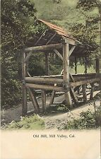 Hand-Colored Postcard Old Saw Mill, Mill Valley CA Marin County Unposted
