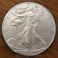 2014 1 Troy oz .999 Fine Silver American Eagle $1 BU Coin from Mint Tube Roll 1
