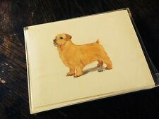 Zeppa Studios 8 Blank Greeting Cards w/ Envelopes & Stickers Norfolk Terrier New