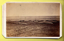 CDV - Redcar Beach, Industrial Activity / Fishing - Oddchild - Redcar