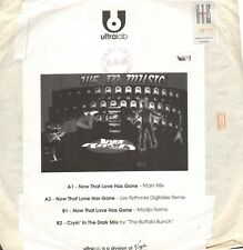 We In Music – Now That Love Has Gone - Ultralab – 89728767 - Ita 2001 - Promo