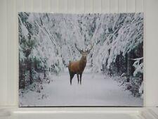 LED Bild Hirsch im verschneiten Winterwald beleuchtet Polyester Holz 30x40 cm