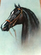 Race HORSE Equestrian Portrait Painting Steeplechase Jump Show Swap Playing Card