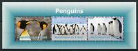 Chad Birds on Stamps 2016 MNH Penguins Emperor Penguin 3v M/S