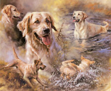 GOLDEN RETRIEVER DOG FINE ART LIMITED EDITION PRINT - by the Late Mick Cawston