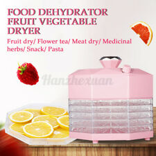 8 Levels Mini Food Dehydrator Fruit Vegetable Herb Meat Drying Machine 5 Trays