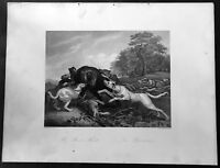 1855 A H Payne Original Antique Print of The Bear Hunt by Franz Synders