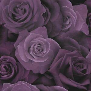 Austin Purple Rose Floral Flower Feature Wallpaper 675601 Arthouse Opera
