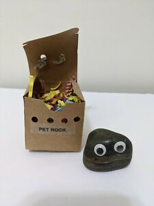 Vintage Pet Rock With Box and Nest 1 inch