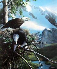 """Majestic View By Kevin Daniel Eagle Mountain Print  19.5"""" x 24"""""""