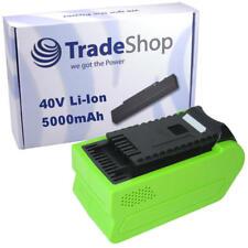 BATTERIA 40v 5000mah li-Ion per Greenworks Tools G-Max Motosega 20117 20077