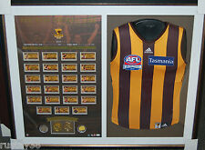 HAWTHORN HAWKS 2014 AFL PREMIERS TEAM HAND SIGNED FRAMED JUMPER HODGE RIOLI