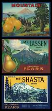 "(3) RARE OLD 1940 ""MT LASSEN***MT SHASTA***MT HOOD"" BOX LABEL ART CALIF/OREGON"