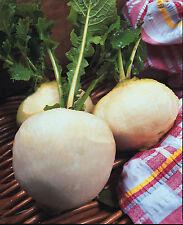 Légumes Navet Boule de Neige - 1000 Graines