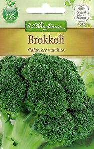 4010 Chrestensen Brokkoli 'Calabrese natalino' ca. 80 Samen mittelfrüh