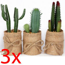 SET OF 3 CACTUS IN HESSIAN PLANT POT HOUSE OFFICE INDOOR GIFT 15CM DECORATION