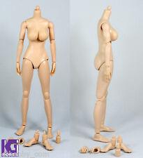 Custom 1/6 Female Nude Action Figure Body-Large Breast Pale Light Skin Tone N001