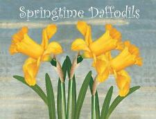 Springtime Daffodils Garden Flowers Nature Home Spring Metal Sign