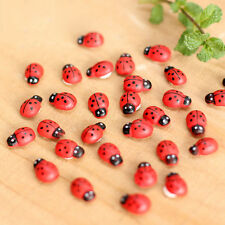 10Pcs Beetle Ladybug Fairy Garden Ornament Figurine Miniature Dollhouse Decor