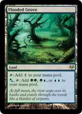 Eventide Flooded Grove - Foil x1 Moderate Play, English Magic Mtg M:tG