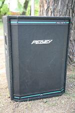 Peavey Lautsprecherboxen LEER! gebraucht