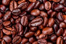 5 lbs Roasted 100% Arabica Coffee Beans from Vietnam Whole Bean & Grounded