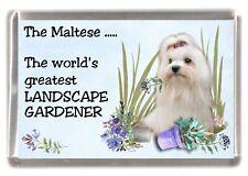 """Maltese Terrier Dog Fridge Magnet """"Greatest Landscape Gardener"""" by Starprint"""
