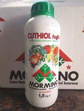 CUTHIOL FOGLIA MORMINO RAME E ZOLFO LIQUIDO 1,5  KG FUNGHICIDA PASTA FLUIDA