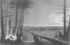 CABIN CAMPFIRE FOREST on LAKE ONTARIO SHORE ~ 1838 Landscape Art Print Engraving