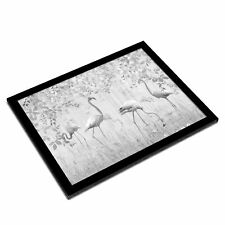 A3 Glass Frame BW - Flamingo Birds in Nature  #43353