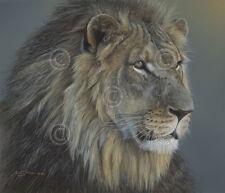 LION ART PRINT - Eye of the Kingdom by Adam Smith Safari Wildlife Poster 26.5x30