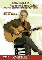 Easy Steps Acoustic Blues Guitar Fingerstyle Blues Learn to Play Music DVD 2