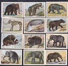 Switzerland Poster Stamps  MAMMOTH MANATES ELEPHANT