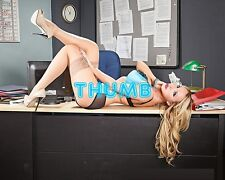 Nikki Benz - 10x8 inch Photograph #047 in Underwear & Nude Lace Top Stockings