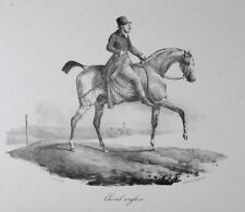 Theodore Gericault  (French 1791-1824) Cheval Anglais, Lithograph on wove paper