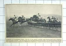 1936 First Hurdle Of The Pirbright Handicap Hurdle Race, Sledge Leading