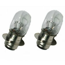 2 Light Bulbs Headlight Quads Yamaha Raptor 250 YFM of 2008 to 2015