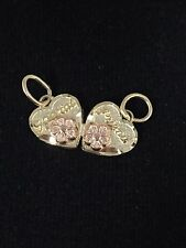 """14K Yellow Gold Double Hearts """"Special Friends"""" Charm Pendant"""