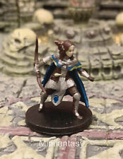 Illydia Maethellyn D&D Miniature Dungeons Dragons Female Elf Cleric Ranger 24