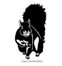 Animals - Wild Life - Tree Squirrel 1 Laptop, Car, Bumper, Door Decal Sticker
