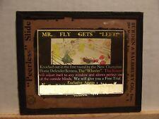 Magic Lantern Advertising Slide ~ Mr. Fly Window Screen
