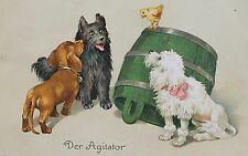 17259 AK 3 Hunde mit Kücken und Faß Dackel Pudel 1910 PC dachshund